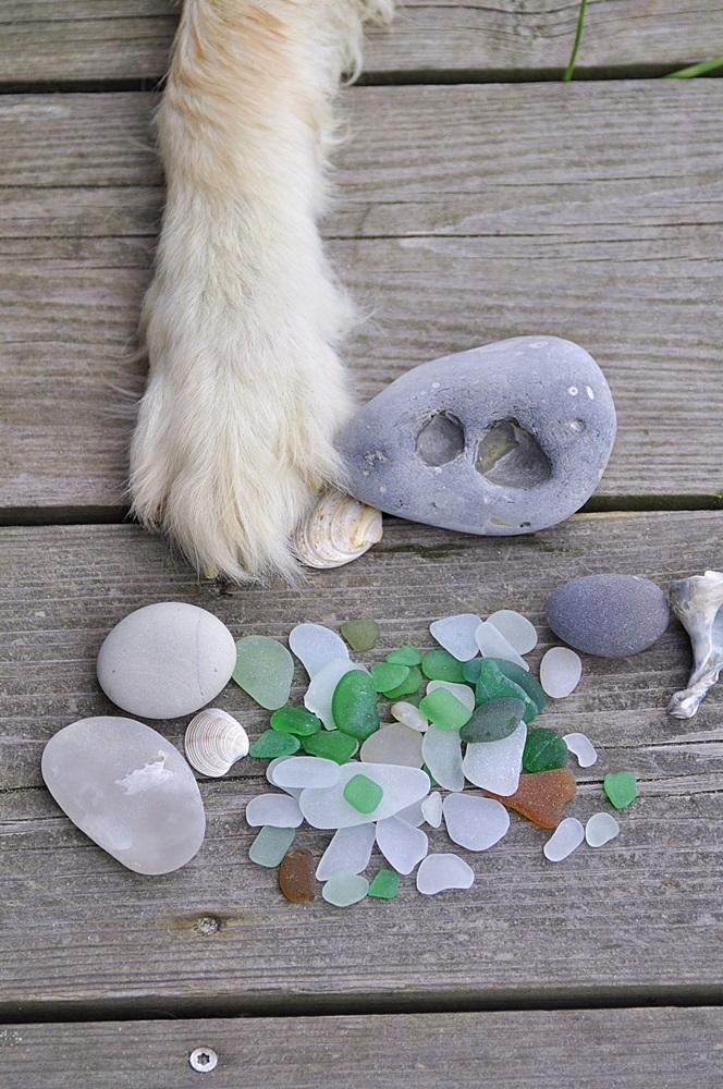Strandglas Steine Muscheln