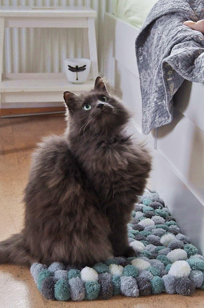 DIY Teppich aus PomsPoms mit Katze